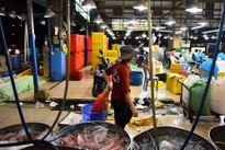 Người phụ nữ 20 năm bốc vác ở chợ Bình Điền