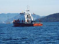 Cứu 2 ngư dân bị chìm tàu trong ngày cuối năm Ất Mùi