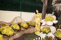 Ngắm 'chợ hoa xuân' trong biệt thự riêng của Hoa hậu Đền Hùng