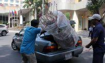 Mai, đào bạc triệu ở Sài Gòn đại hạ giá ngày cuối năm