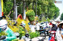 Chiều 29 Tết, người Sài Gòn chen nhau đi mua hoa đại hạ giá tràn ngập vỉa hè