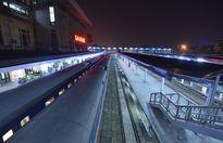 Mang đào Nhật Tân lên chuyến tàu cuối về quê đón Tết