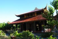 Chuyện vui buồn về ngôi chùa nuôi khỉ độc đáo ở Việt Nam