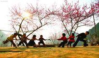 Nghi lễ và trò chơi Kéo co: Di sản văn hóa đa quốc gia
