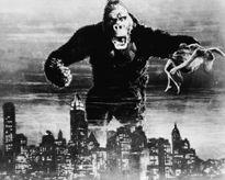 Những 'tài tử' Khỉ đáng yêu và...đáng sợ!