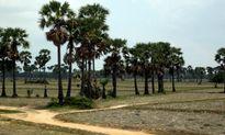 Một bộ đội VN chiến đấu tại Campuchia trở về sau 35 năm lưu lạc