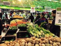 70.000 đồng/kg cà chua sau Tết