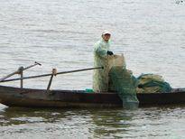 Sau Tết giá tôm cá tăng gấp 3, dân ngày đêm đi thả lưới lồng