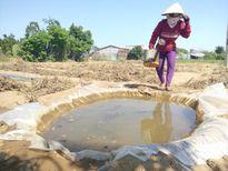 Thiếu nước, Bến Tre ưu tiên cấp nước cho bệnh viện