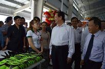 Khánh thành hàng loạt nhà máy sản xuất công nghiệp trên địa bàn tỉnh Kiên Giang