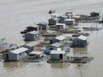 Báo Australia bàn về nguy cơ ngập lụt nghiêm trọng ở ĐBSCL