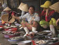 Cá chết: Miền Trung rau - củ đội giá, du lịch đìu hiu