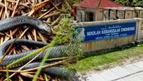 Malaysia: Nắng nóng bất thường, hơn 700 người bị rắn cắn