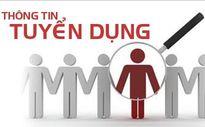 Ngân hàng CSXH tỉnh Hà Tĩnh tuyển dụng 3 chỉ tiêu