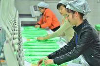 Công nhân lao động dệt - may: Lo bị 'vắt chanh, bỏ vỏ'