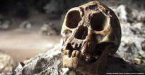 """Phát hiện tổ tiên 700.000 năm tuổi của người """"Hobbit"""""""