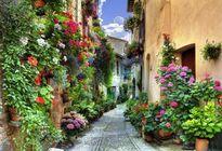 Ngỡ ngàng trước thị trấn ngập sắc hoa đẹp như tranh vẽ ở Italia