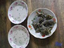 Hương đồng quê gói cả trong vị bánh lá mơ nước cốt dừa