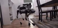 Alphabet ra mắt chó robot có khả năng dọn dẹp nhà cửa