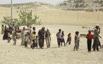 Liên tiếp thảm bại, IS bắt cóc 900 dân thường trả đũa