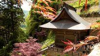 1015 bước đến tiên cảnh linh thiêng chốn cửa Phật