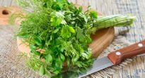 Nga bào chế thuốc chống ung thư từ mùi tây và rau thì là