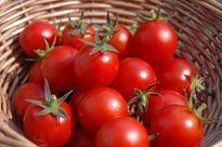 10 thực phẩm giữ nước hiệu quả cho cơ thể ngày hè