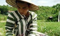 Thanh Hóa: Phạm nhân cứu mạng bé trai đuối nước