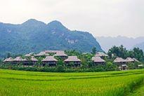 5 khu nghỉ dưỡng thiên nhiên trốn khói bụi gần Hà Nội hấp dẫn nhất
