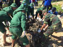 1.000 ĐVTN tham gia làm sạch bãi biển ngày Chủ nhật Xanh