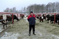 Bùng nổ nông nghiệp, từ nhập khẩu, lần đầu tiên Nga chuyển qua xuất khẩu thịt lợn