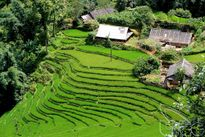 Về Lào Cai trải nghiệm nhiều hoạt động du lịch đặc sắc