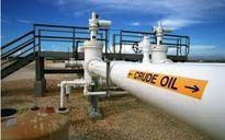 Các nhà máy lọc dầu Mỹ tiếp tục hoạt động bất chấp dư cung xăng
