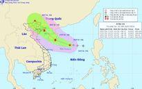 Áp thấp nhiệt đới cách quần đảo Hoàng Sa 220km, có thể mạnh thành bão