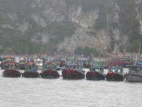 Quảng Ninh: Còn 6 tàu đánh bắt xa bờ bị mất liên lạc