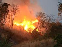 Rủ nhau lên rẫy đốt thực bì, 2 anh em nhà nghèo bị 'giặc lửa' cướp mạng