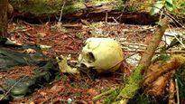 Mùi hôi thối nồng nặc tố cáo kẻ sát nhân trong rừng (Kỳ 1)