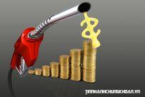 Đầu tư bất thành, Petrolimex Hà Nội ráo riết đòi nợ?