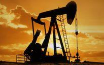 Không ngừng giảm, giá dầu xuống thấp nhất trong 3 tháng