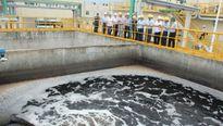 Sắp thanh tra các dự án có xả thải trên phạm vi cả nước