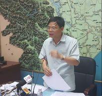 Gần 5.500 cây xanh Hà Nội bị đổ do bão Mirinae