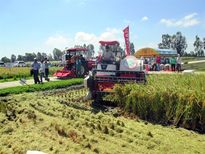Loay hoay cơ giới hóa nông nghiệp: Bước tiến chậm, phụ thuộc nước ngoài