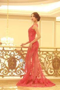 Người đẹp có chiều cao 'khủng nhất Vịnh Bắc Bộ' tại Hoa hậu Bản sắc Việt
