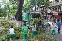 Hà Nội: 773 tấn rác được thu dọn sau cơn bão số 1