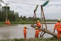 Lưới điện 500 KV và 220 KV đã vận hành bình thường sau bão số 1