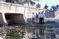 Đà Nẵng: Hoặc là khu dân cư ngập úng hoặc là bãi biển mất vệ sinh
