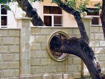 Cấm kị về cây cối trong phong thủy nhà ở
