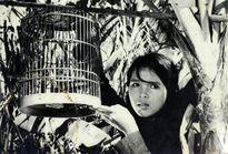 Phim Việt đang nao núng ở khâu nào?