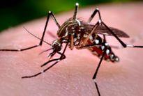 Kon Tum: Người dân bất an với dịch sốt xuất huyết bùng phát