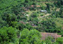 Gia đình 10 người con ở vùng rừng núi Quảng Ngãi